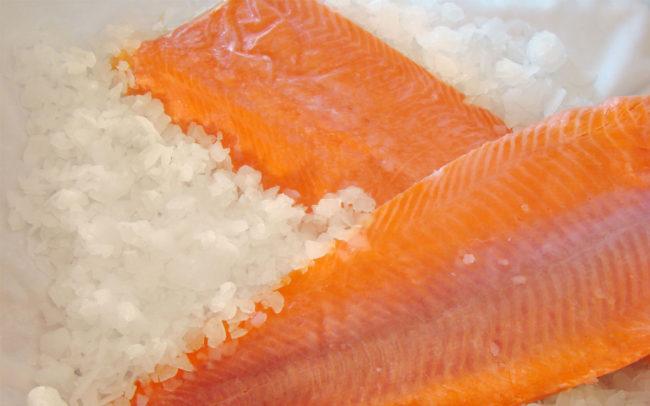 Filetes salmon-VP Congelados artico