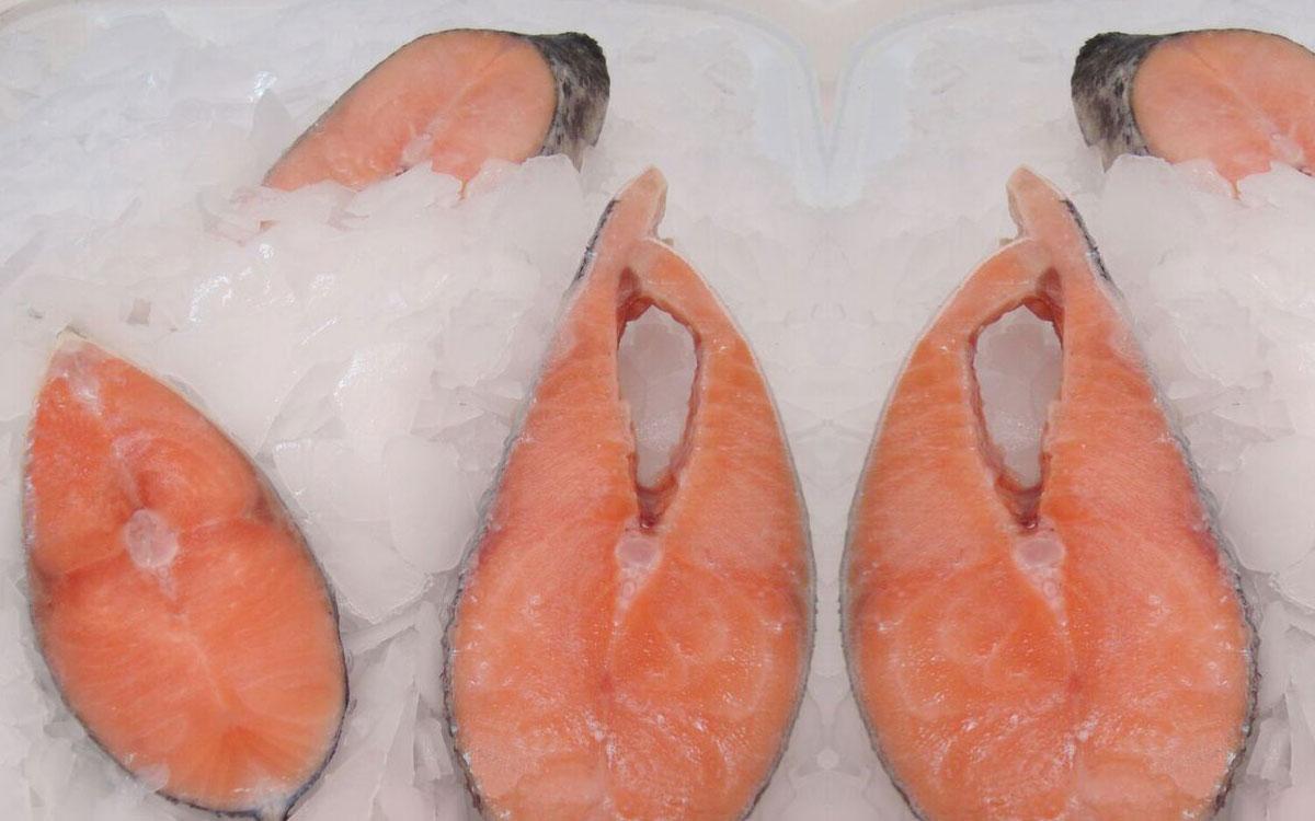 Rodajas-Salmon Congelados artico