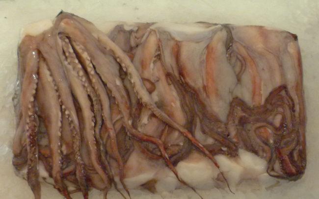 Tentaculo-Jibia Congelados artico